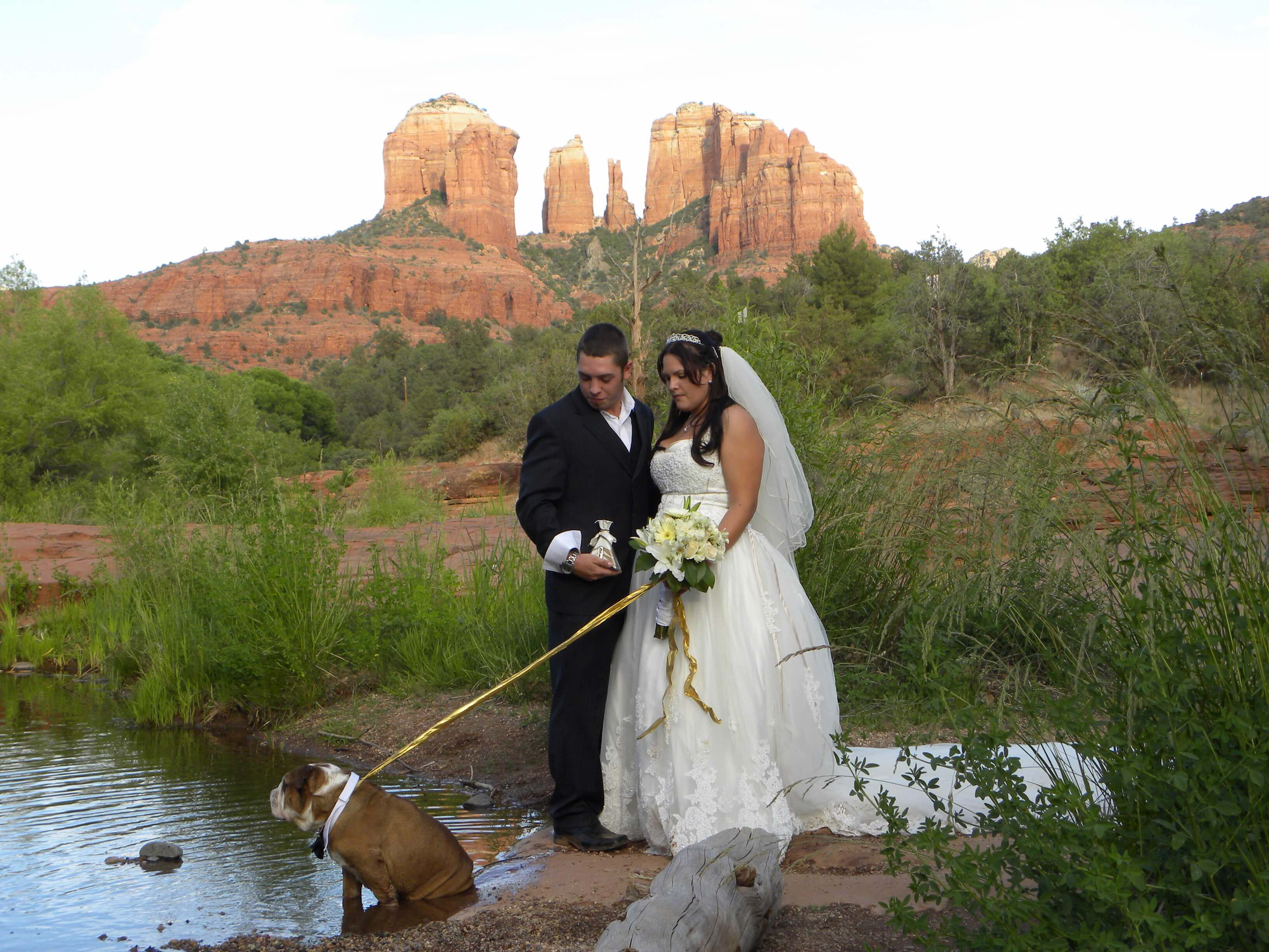 bride, groom and best pet at their wedding by the water at Red Rock Crossing in Sedona
